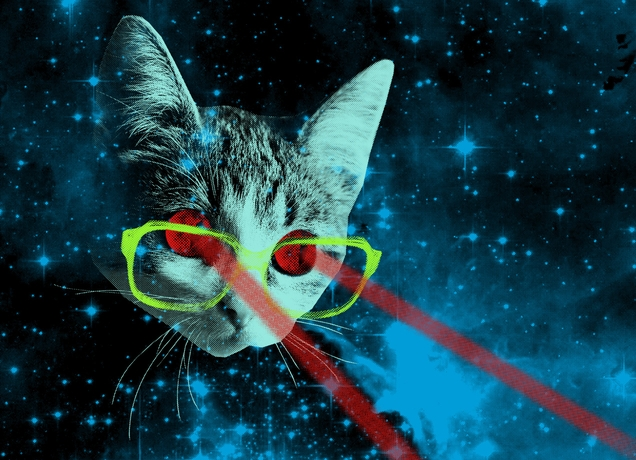 spacecatglasses